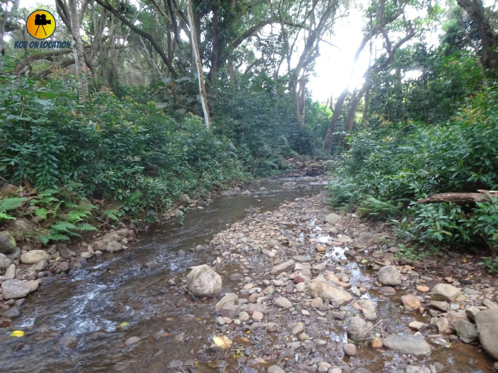 Kualoa stream